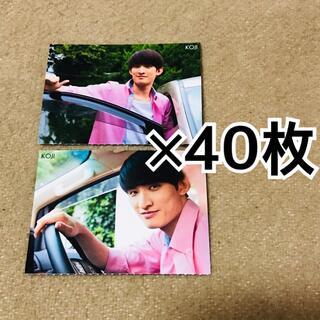 向井康二 厚紙 40枚(その他)