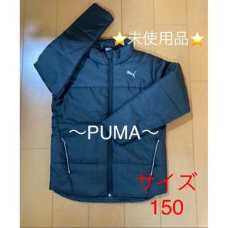 PUMA - PUMA  中綿ジャケット 150サイズ