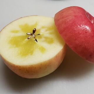冷蔵、新鮮⭐蜜入り サンふじ✨家庭用3kg(フルーツ)