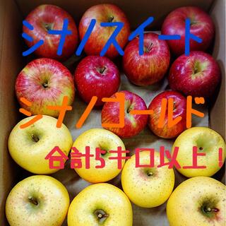 りんご シナノスイート シナノゴールド(フルーツ)