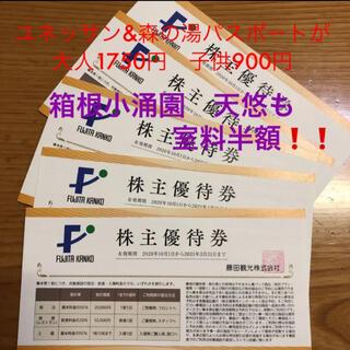 5枚セット❗️藤田観光 株主優待 ホテル ユネッサン 下田海水水族館など割引券(プール)