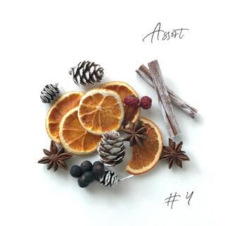 ドライハーブ, ドライオレンジ, アソート 花材 < #4 >(ドライフラワー)