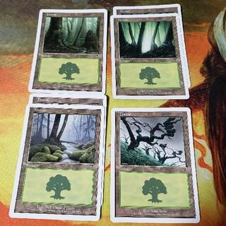 マジックザギャザリング(マジック:ザ・ギャザリング)の第7版 森4種6枚セット 英語版 /7ED MTG(シングルカード)