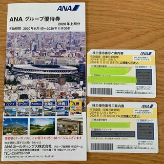 エーエヌエー(ゼンニッポンクウユ)(ANA(全日本空輸))のANAの株主優待券とグループ優待券(航空券)