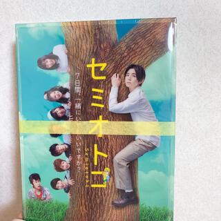 【M.M様 専用】セミオトコ DVD Box(TVドラマ)