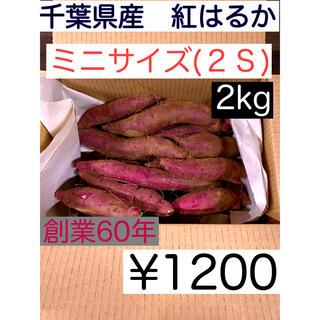 千葉県産 サツマイモ(紅はるか) 2S 土つき 2kg