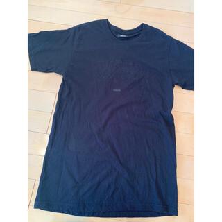 ステューシー(STUSSY)のステューシー Tシャツ(Tシャツ(半袖/袖なし))