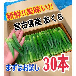 【お試し30本】宮古島産 おくら オクラ