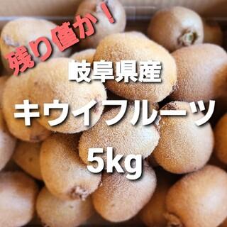 ⑤07 岐阜県産 無農薬 キウイフルーツ 5kg お得!(フルーツ)