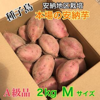 農家直送!安納地区の安納芋 M 2kg A級品