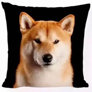 柴犬(一枚) クッションカバー(その他)