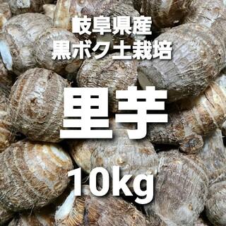 岐阜県産 無農薬 ねっとり里芋 10kg お得!(野菜)
