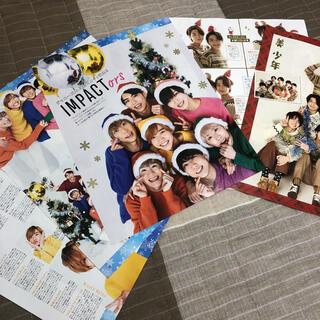 ジャニーズJr. - 月刊TVガイド 1月号 IMPACTors 美少年