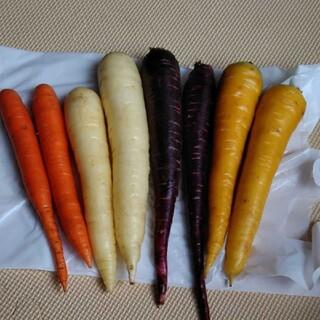 千葉県産カラフルにんじん1.5kg(野菜)