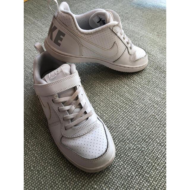 NIKE(ナイキ)のナイキ コート バーロウ LOW PSV 21cm キッズ/ベビー/マタニティのキッズ靴/シューズ(15cm~)(スニーカー)の商品写真