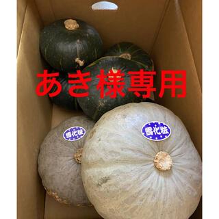 北海道産 雪化粧 ブラックのジョー(野菜)