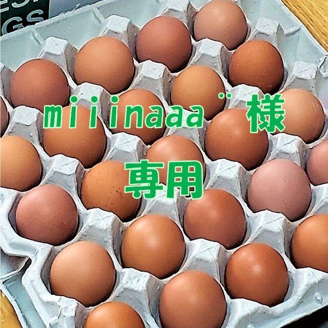 11/30発送【miiinaaa¨̮様専用】初卵25個+M-L25個  食品/飲料/酒の食品(野菜)の商品写真
