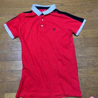 American Eagle - アメリカンイーグル ポロシャツ メンズ