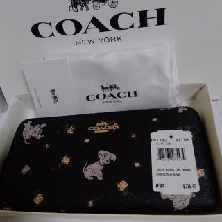 COACH - COACH 101匹わんちゃんコラボ 長財布