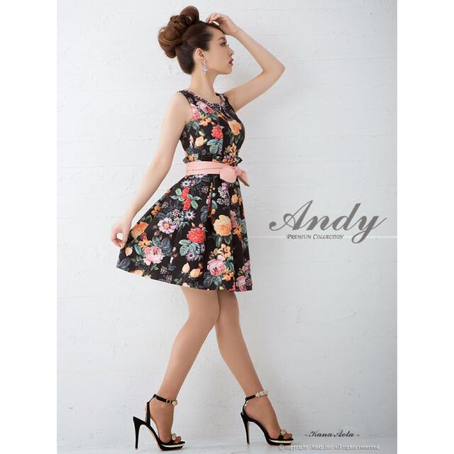 Andy(アンディ)の激レア❗️ 限定 Andy アンディ ドレス パーティー レディースのフォーマル/ドレス(ミニドレス)の商品写真