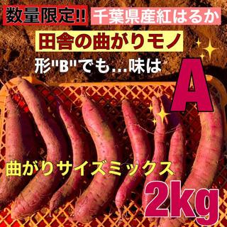 千葉県産 サツマイモ(紅はるか) 曲がり 土つき 2kg