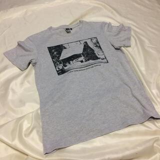 THE NORTH FACE - ザノースフェイス テイシャツ