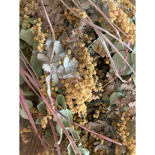ミモザとユーカリのスワッグ ハンドメイドのフラワー/ガーデン(ドライフラワー)の商品写真