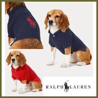ラルフローレン(Ralph Lauren)のラルフ 犬 コットン ピケ ロゴ ドッグ ポロシャツ 洋服 M(犬)