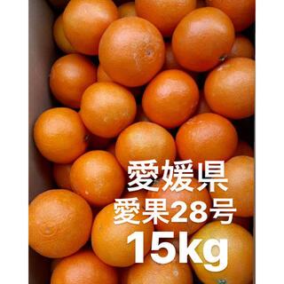 ・愛媛県 愛果28号 15kg(フルーツ)