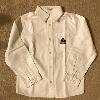 ティンカーベル(TINKERBELL)のTINKERBELL ワイシャツ 綿シャツ(ドレス/フォーマル)