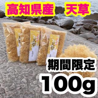 高知県産 天草 100g   期間限定 即購入OKです!(乾物)