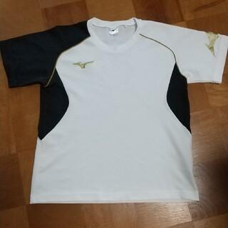 MIZUNO - mizuno ジュニアTシャツ 160