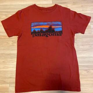patagonia - 新品未着用 パタゴニア ビンテージ73ロゴ Tシャツ