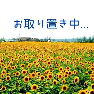 サマンサモスモス(SM2)のショート丈☆ブルゾン☆SM2(ブルゾン)