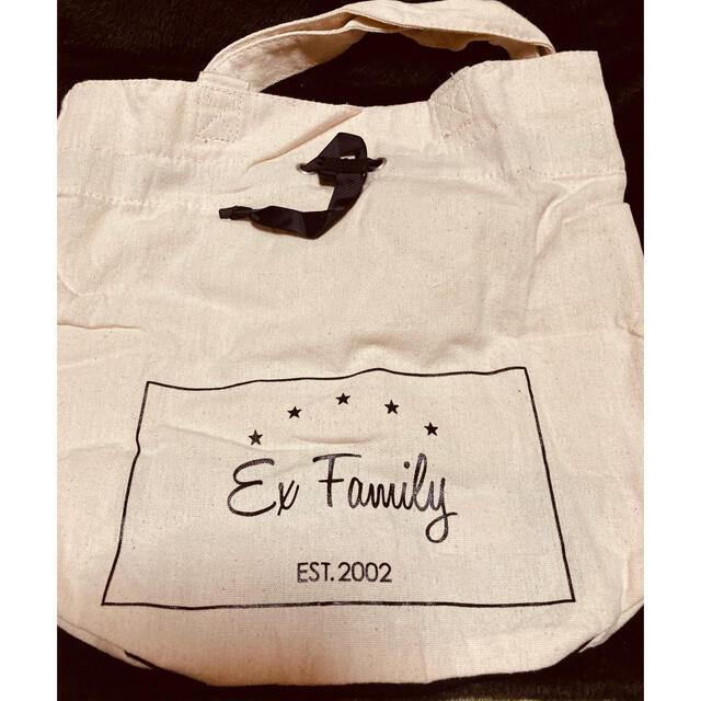 EXILE TRIBE(エグザイル トライブ)のEXILEファミリー グッズ エンタメ/ホビーのタレントグッズ(ミュージシャン)の商品写真