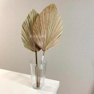 フランフラン(Francfranc)のパームリーフ palm leaf 2本set(その他)