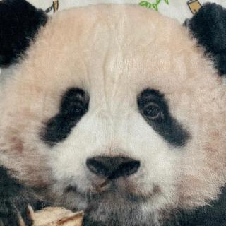しまむら - パンダのシャンシャン ひざ掛け