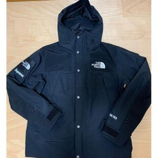 Supreme - 国内正規 M North Face Leather Mountain Parka
