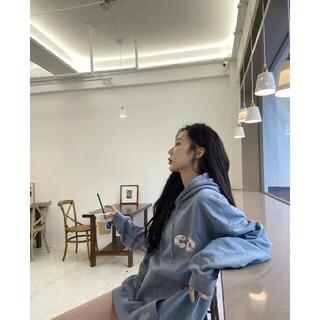 ディオール(Dior)のDIOR パーカー★カップルモデル(パーカー)