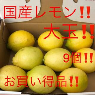 国産 無農薬広島レモン 大玉9個 1.2kg越え(フルーツ)