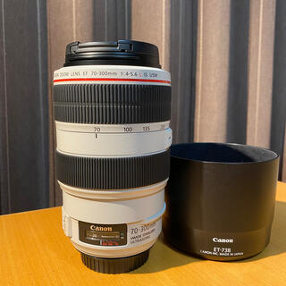 Canon - 【美品】キヤノン EF70-300mm F4-5.6L IS USM 完動品