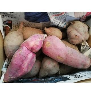 【送料無料】安納芋 サツマイモ 小さめ 2キロ以上【ラスト1箱】(野菜)