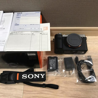 SONY - SONY α7C ボディ ソニー α7Ⅲ α6600
