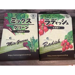 ミックス ラディッシュ 有機種子 水耕栽培 家庭菜園 野菜 サラダ 固定種(野菜)