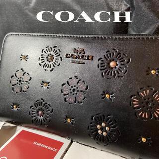 COACH - プレゼントにも❤️新品コーチ レディス高級カーフレザー×スタッズ 長財布