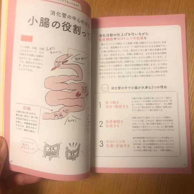 主婦と生活社(シュフトセイカツシャ)の美腸の教科書 専用品 エンタメ/ホビーの本(健康/医学)の商品写真