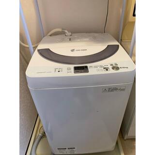 SHARP - 洗濯機 SHARP 5.5kg 2013モデル