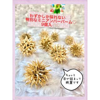 【特別なミニサイズ】フウの実 アンバーバーム モミジバフウの実 ゴールド(ドライフラワー)