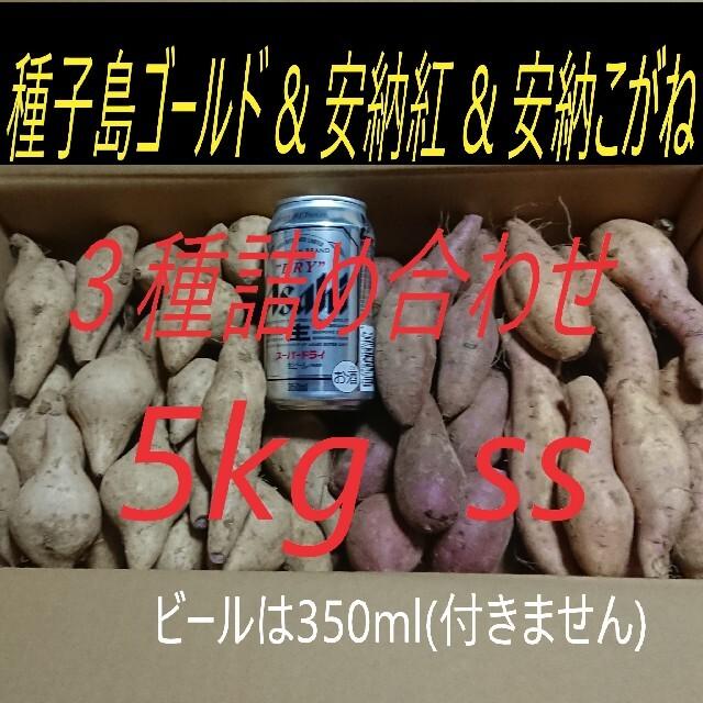 5キロが2箱 安納芋 2品種 & 種子島ゴールド SSサイズ  食品/飲料/酒の食品(野菜)の商品写真