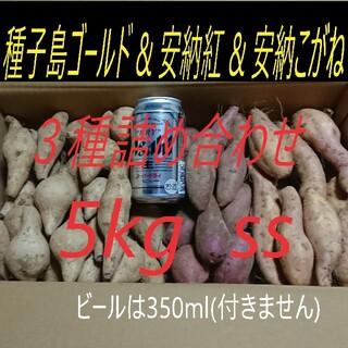 5キロが2箱 安納芋 2品種 & 種子島ゴールド SSサイズ (野菜)